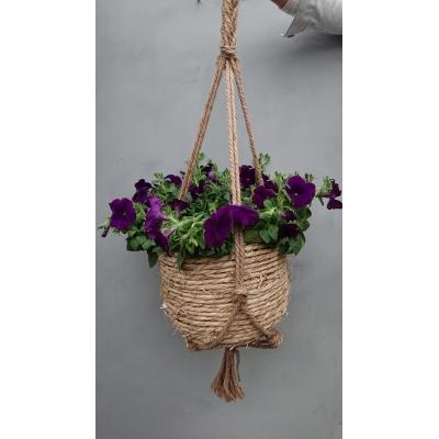 Hangmand 'Petunia'